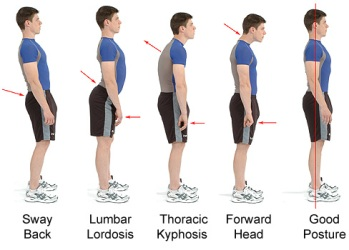 best posture to grow taller